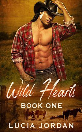 Wild Hearts by author Lucia Jordan. Book One cover.